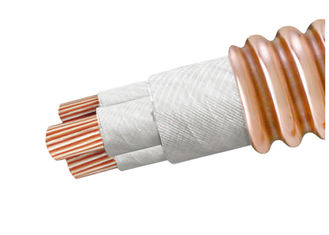 China Mineral Insulated Flexible High Temperature Cable BTTZ Series Excellent Shielding Property supplier