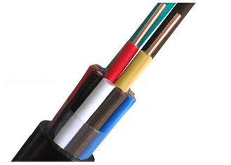 China XLPE / PVC Control Cables Insulation Copper Wire Screened 450V supplier