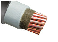 IEC Standard LV MV FRC Fire Retardant Cable XLPE Insulation LSZH Sheathed