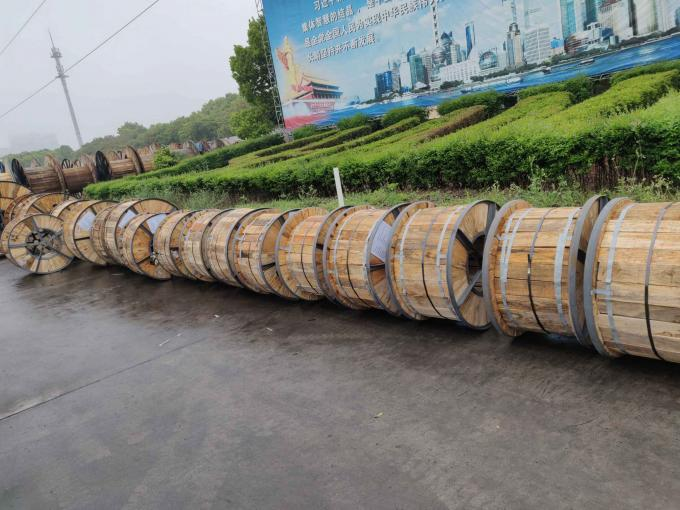 Medium Voltage XLPE Insulated Power Cable Single Core / 3 Core Copper Conductor XLPE Insulated Cable N2XSY